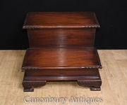 Victorian Library Steps Mahogany Ladder Cabinet Book